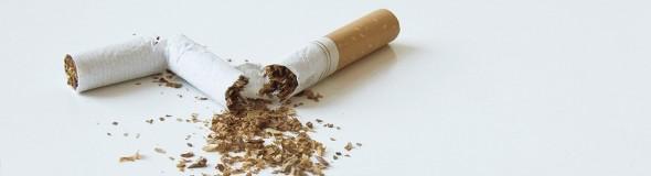 buch rauchen aufhören
