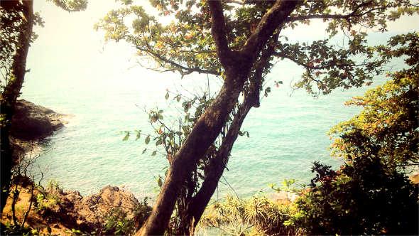 Thailand-Baum-Meer